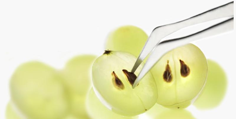 Ulje koštice grožđa je jedan od sastojaka pure+allure krema.